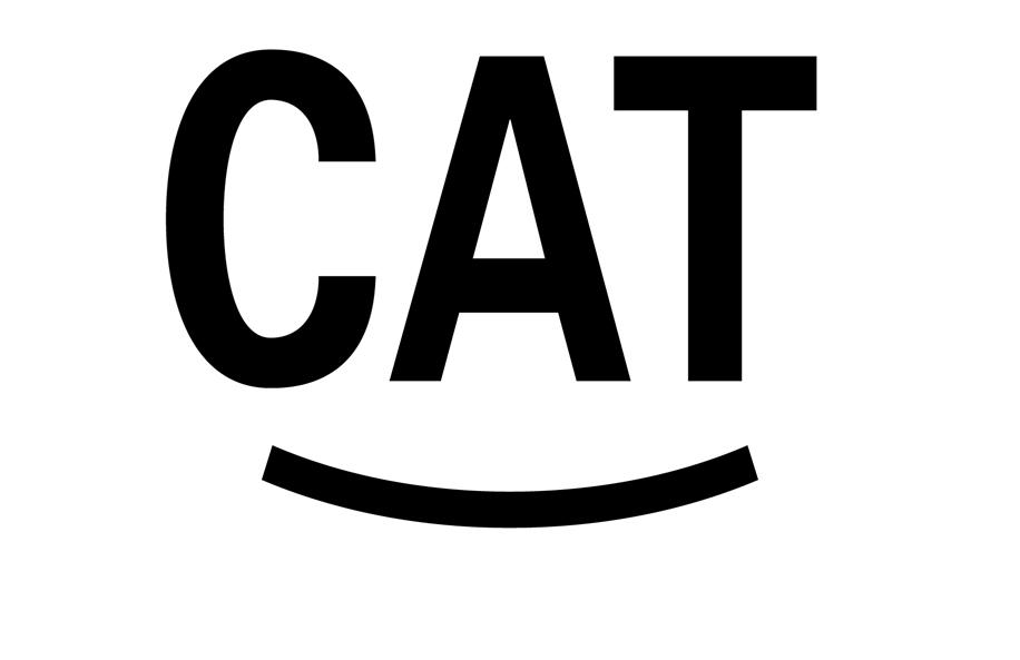 ZW_cat01