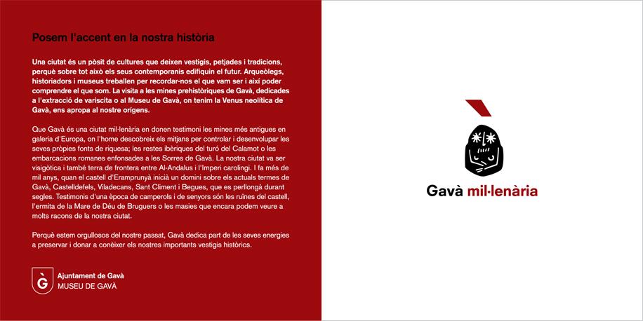 ZW_gava11