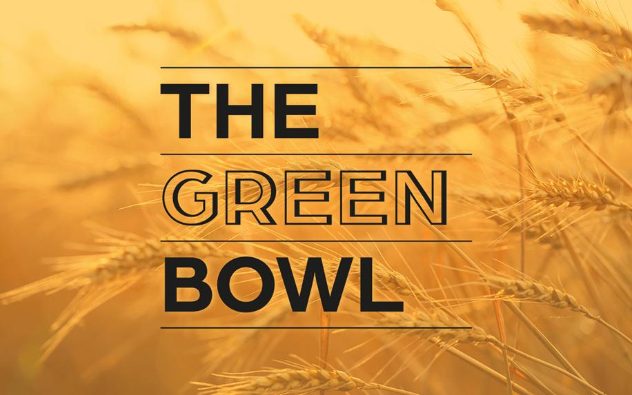 ZW_greenbowl26
